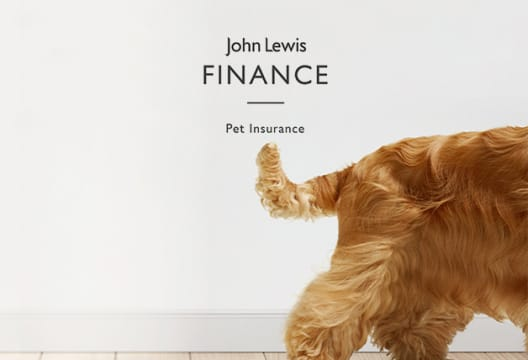 Grab up to 10% Discount on Online Orders at John Lewis Pet Insurance