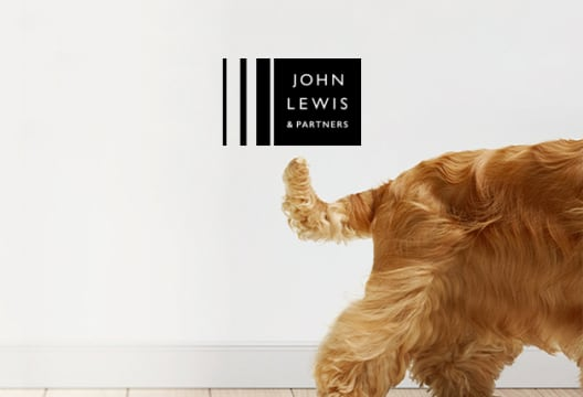Up to £12,000 a Year Cover for Vet's Bills at John Lewis Pet Insurance